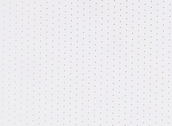 PVC045 Perforated White
