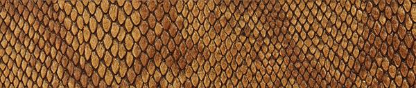 Snake Design 1